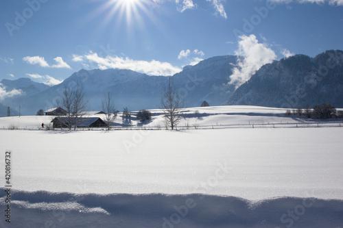 Fototapety, obrazy: tief verschneite Winterlandschaft im Sonnenlicht mit Spuren im Schnee