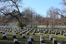 Closeup Shot Of The Arlington National Cemetery