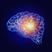 Illustration Human Brain And Nerve Or Blood Vessel Concept On Dark Blue Background,