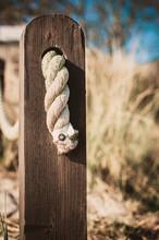Pfahl Mit Seil An Der Küste Am Strand