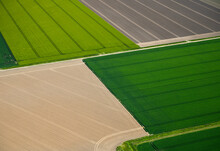 Fields With Roads And Ditches Between Them In Spring, Aerial View, Netherlands