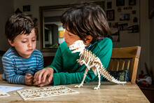 Boy Showing Brother Way To Build Wooden Dinosaur