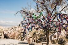 Evil Eye Tree, Pigeon Valley, Göreme, Cappadocia, Turkey