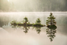 A Small Island Of Tiny Pines Reflect Onto Two Jack Lake In Banff National Park As The Morning Sun Shines Golden Color Through The Fog And Mist.