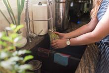 Woman Washing Artichokes Under Kitchen Tap