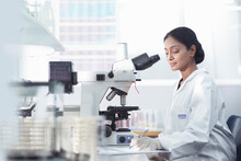 Female Scientist Researcher Using Microscope In Research Laboratory.