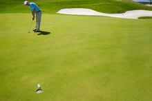 Male Golfer Putting.