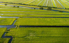 Aerial View Of The Polder Landscape Near Gouda, The Netherlands