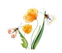 Watercolor Yellow Tulips. Bouquet With Transparent Flowers With Two Butterflies. Hand Painted Print Ready Abstract Artwork. Botanical Illustration With Colorful Moth