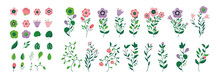 Vector Flower Collection - Big Set Of Flowers And Plants, Colourful And Beautiful. Flat Design Illustration.