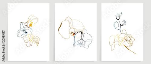 Photo orchid Line art background vector set