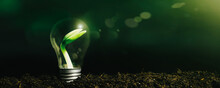 Concept Image Of A Light Bulb On The Ground With A Plant Inside
