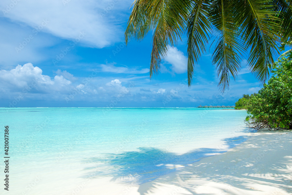 Fototapeta tropical Maldives island with white sandy beach and sea