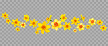 Daffodils Decor On Transparent Background