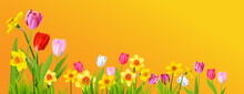 Holiday Spring Yellow Banner