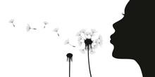 Beautiful Girl Blows Dandelion Silhouette On White