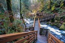 Sweet Home, Oregon - 12-9-2020: GgStairs Leading To McDowell Creek Just Below Majestic Falls Near Sweet Home Oregon