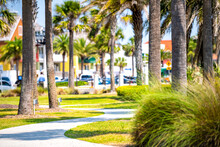 Green Park In St. Augustine, Florida With Palm Trees And Pedestrian Paved Path With Buildings, People In Blurry Blurred Background In Sunny Summer