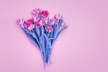 Modern Floral Backgrounds, Flowers Styling Flat Lay