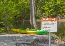 Kayaking On The Shingle Creek In The Shingle Creek Regional Park, Osceola County, Kissimmee, Florida