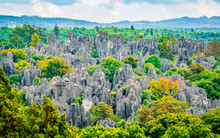 Panoramic Landscape View Of Shilin Major Stone Forest With Bright Autumn Colours Kunming Yunnan China
