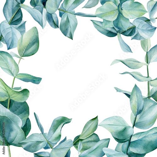 Fototapety, obrazy: Frame of eucalyptus leaves on isolated on white background, green design. Watercolor illustration