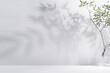 Leinwandbild Motiv Spring sunlight in green branch of tree with shadow on white wall, floor, copy space.