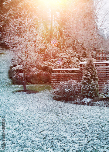 First winter snow falling in autumnal garden