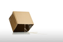 Cardboard Box With Stick As Trap