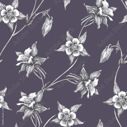 Photo Seamless Pattern  with black and white columbine flowers or aquilegia isolated on Indigo background