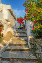 Traditional Alley With A Narrow Street, Whitewashed Houses And A Blooming Bougainvillea  In Isternia Tinos Island, Greece.