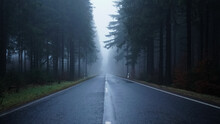 Empty, Foggy And Wet Road Amidst Trees In Forest