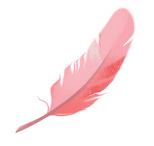 Clipart Pink Bird Feather. Valentine's Day. Wedding Invitation. Cute Illustration In Cartoon Childish Style. The Image Is Isolated On A White Background.