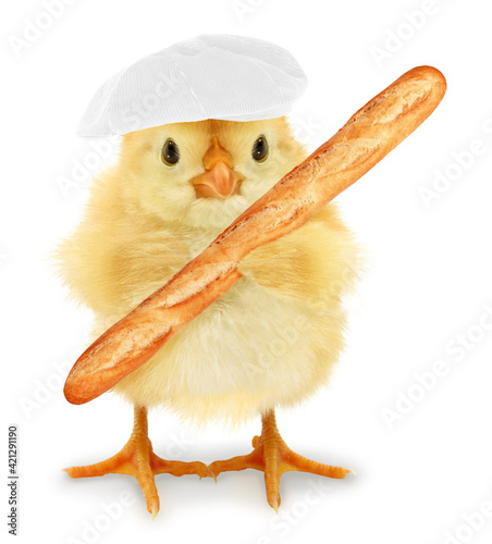 Fotografie, Obraz Cute cool chick baker with long thin bread loaf funny conceptual image