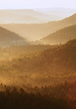 Cold Morning At The End Of Summer. Colorful Summer Morning With Golden Light And Fog Between Hills