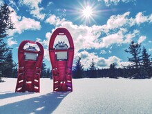 Snowshoes Standing In Snow Against Of Snowy Hills And Mountains. Winter Walks With Forests