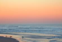 Dawn Patrol Surfers In San Francisco