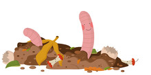 A Cute Worm With Pink Cheeks In The Ground, Next To It Lies Plant Waste: Banana Skin, Apple Core, Eggshell, Peelings. Concept Of Composting Organic Matter. Organic Farming. Utilization Of Organic Wast