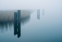 Pills In The Water At A Deep Fog