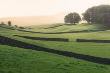 Golden Misty Light On Old Stone Walls And Rolling Hills Of The Rural English Countryside Pastoral Landscape In Swaledale Of The Yorkshire Dales National Park.