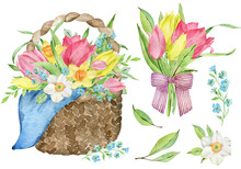 Watercolor Easter Basket With Pink And Yellow Tulips, Daffodils And Forget-me-not Flowers. Spring Illustration.