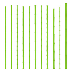 Realistic green bamboo sticks set. Vector Illustration.