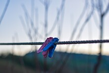Clothes Peg On Clothes Line