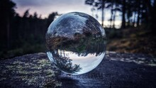 Close-up Of Forest Reflection At Dusk Through A Glass Crystal Ball On A Tree Stump