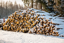 Freshly Cut Logs And Firewood From Loggers Submerged Under A Blanket Of White Snow During