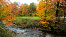 Pan Across Stream Burbling Through Vibrant Trees During Fall Colors In Vermont.