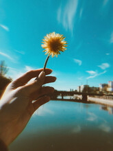 Close-up Of Hand Holding Dandelion Over Lake Against Sky