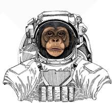 Vector Chimpanzee Portrait. Wild Astronaut Animal In Spacesuit. Deep Space. Galaxy. Ape Head, Monkey Face.