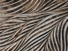 Full Frame Shot Of Wood Curve