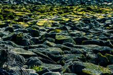 Shot Of Rocks Near The River